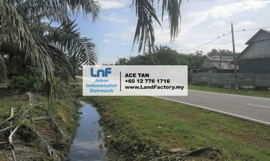 Pekan Nanas – Agriculture Land – SALE